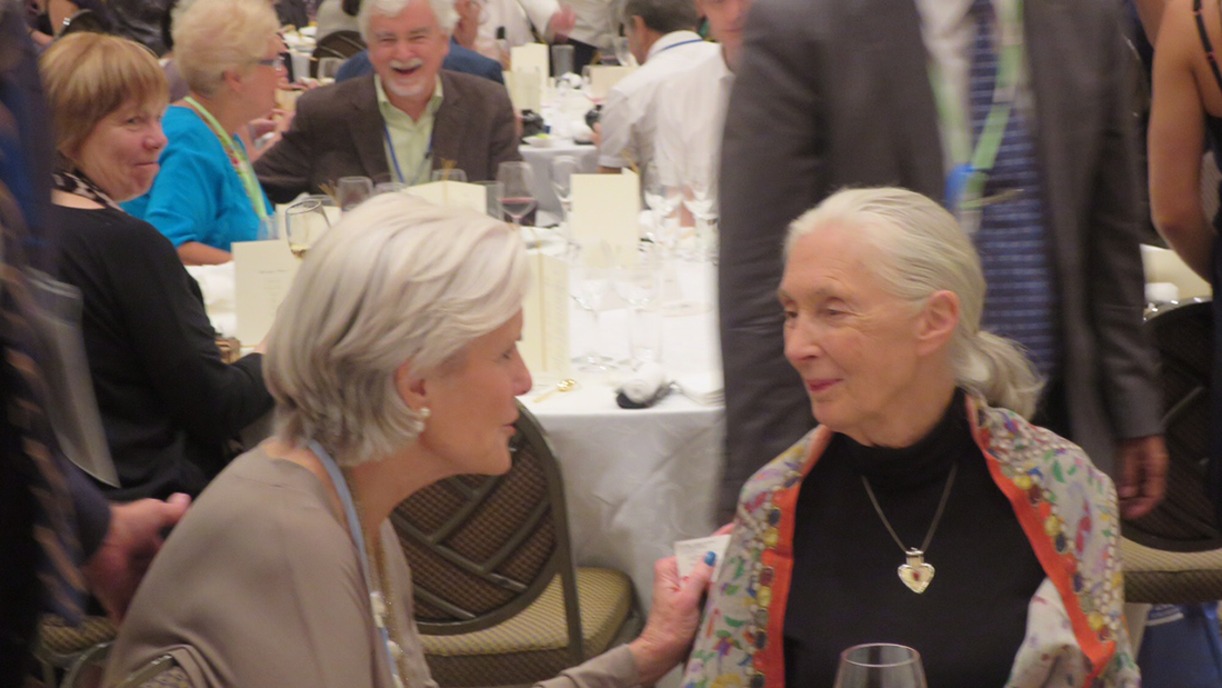 Dr. McDaniel with Jane Goodall, one of the keynote speakers at the International Congress of Psychology in Yokohama, Japan, in July 2016.