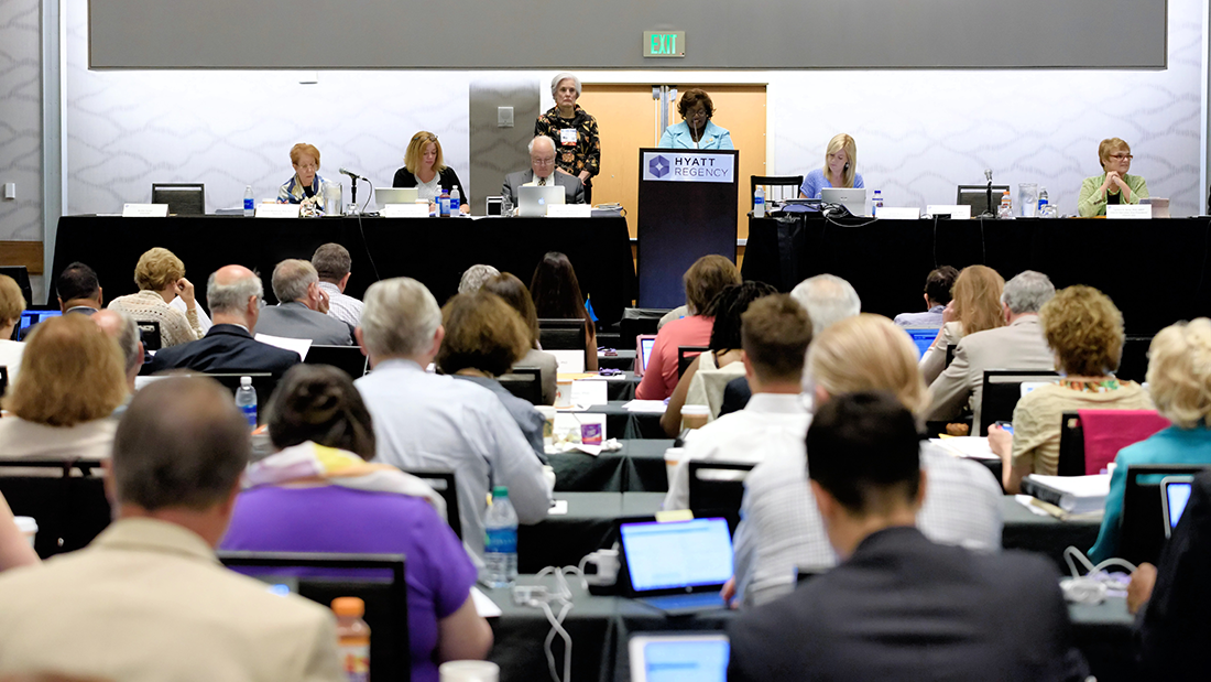 Council meeting at APA convention